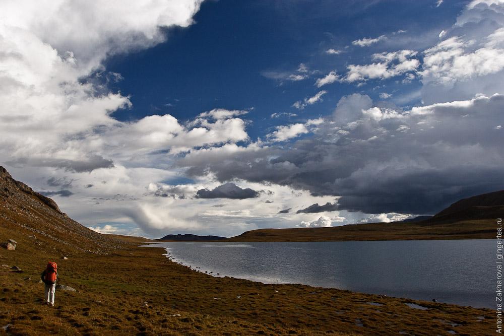 Вдоль озера Суслик-Куль