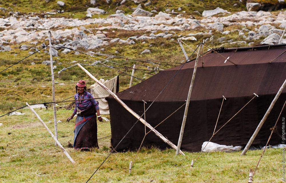черная палатка из ячьей шерсти используется тибетцами зимой