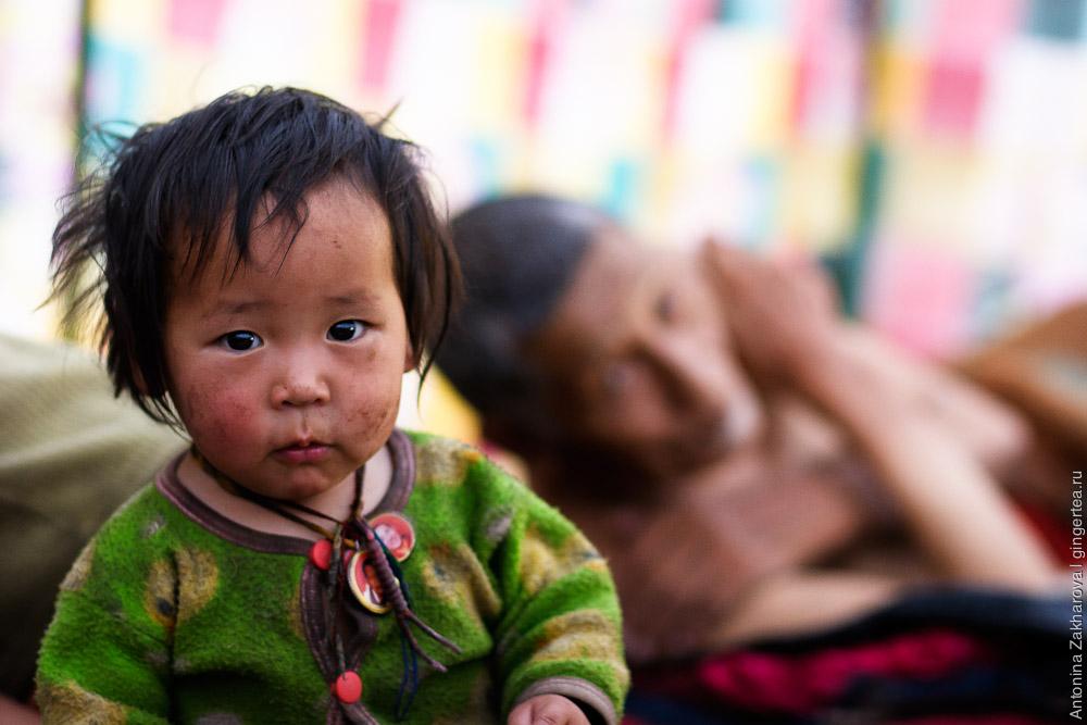 маленький ребенок в палатке тибетских кочевников