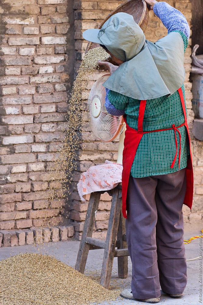 просеивание риса в Китае, город Вейси