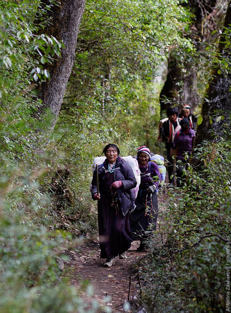 тибетские паломники