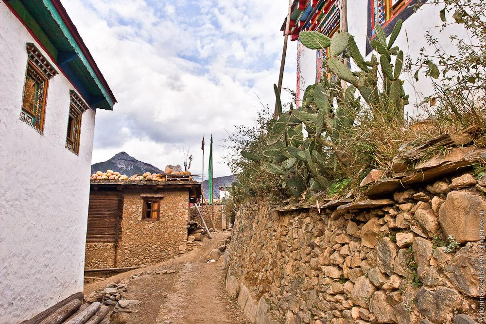 традиционная деревня в Тибете