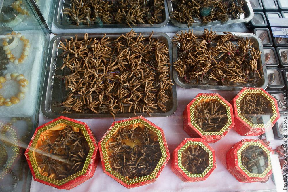 кордицепс китайский, ярцагумба, ярсагумба в китайском магазине