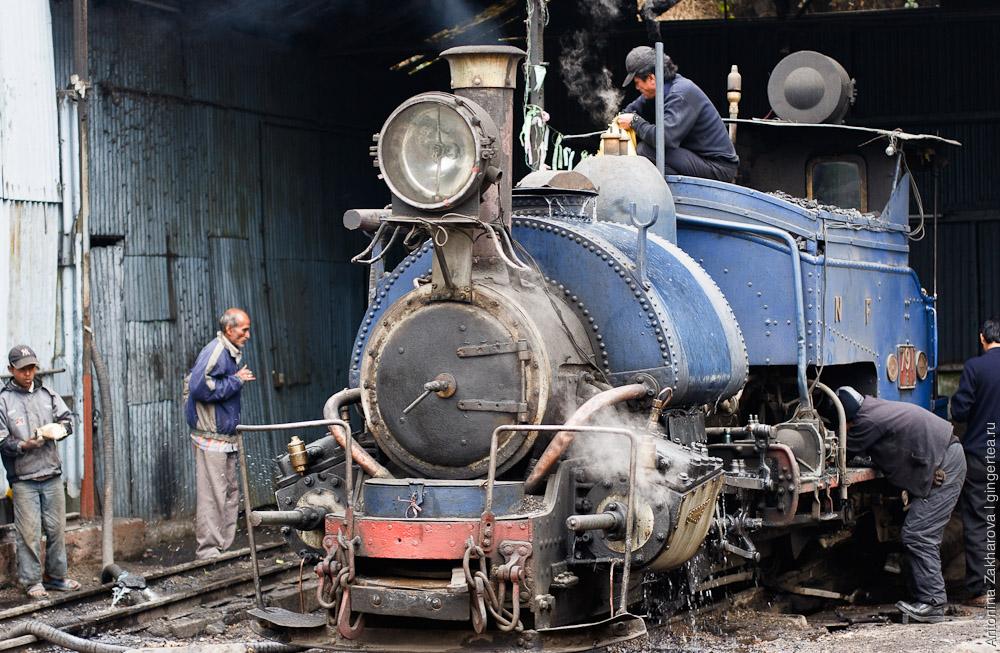 узкоколейная железная дорога на севере Индии