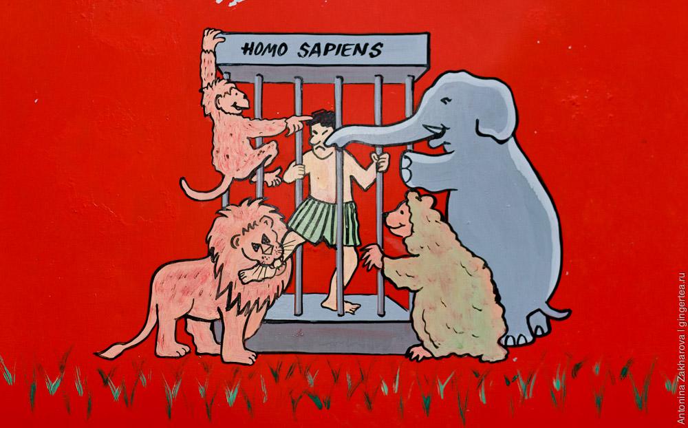 правила поведения в зоопарке, индийский плакат