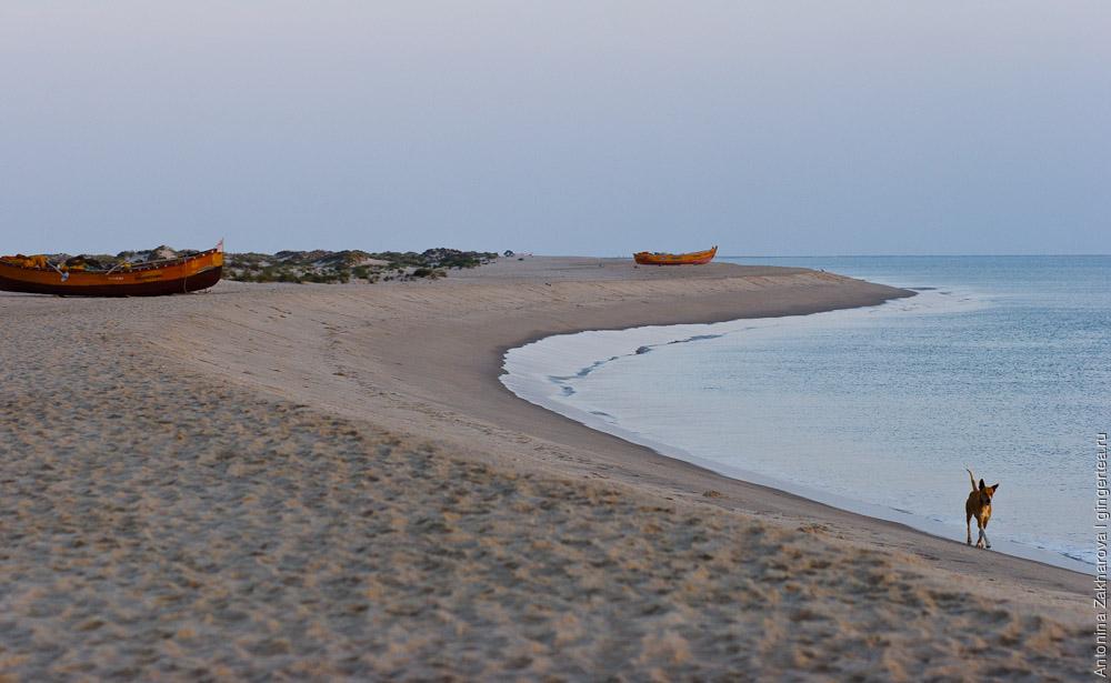 Рамешварам и Данушкоди – песчаная коса между Индией и Шри Ланкой
