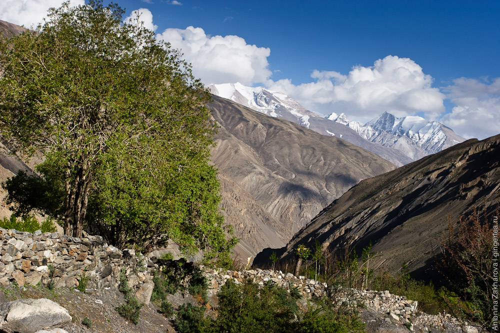 Верхний Киннаур, Сумдо, Химачал-Прадеш, Индия, Upper Kinnaur, Sumdo, Himachal-Pradesh, India