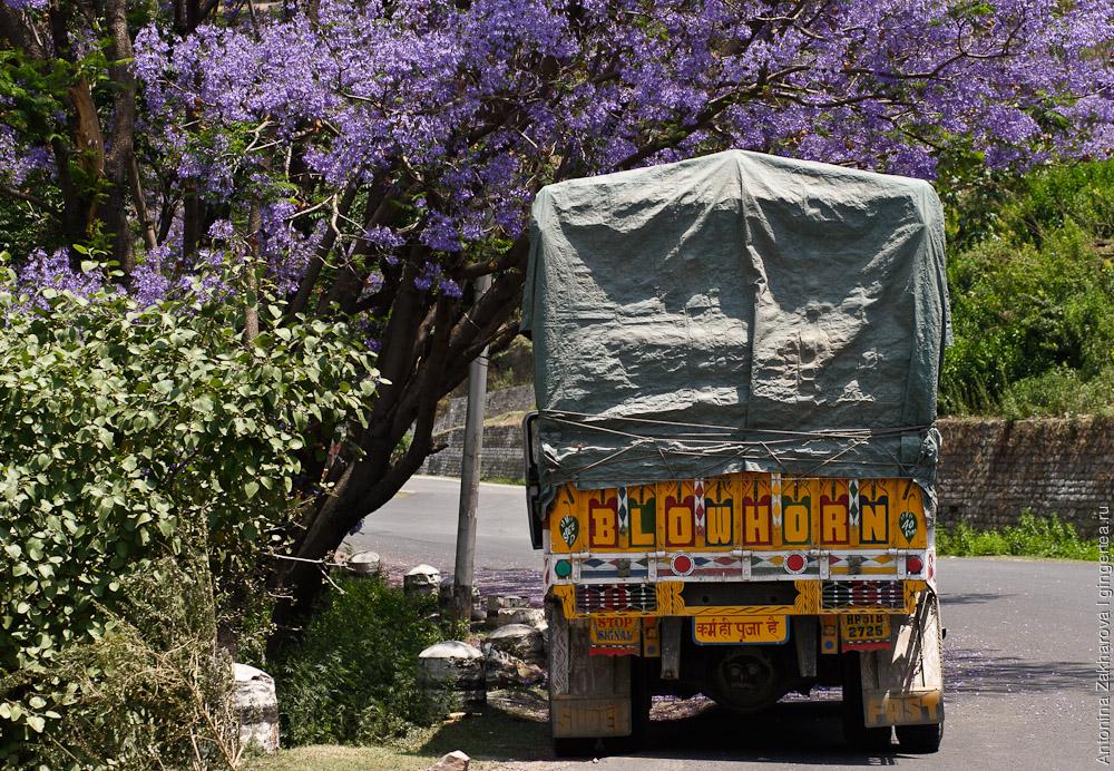 грузовик в Индии, truck in India