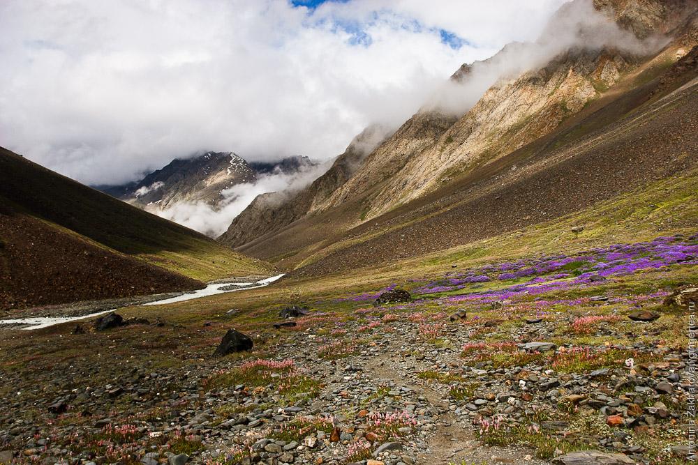 Тропа по каменной осыпи по пути к перевалу Шинго-Ла