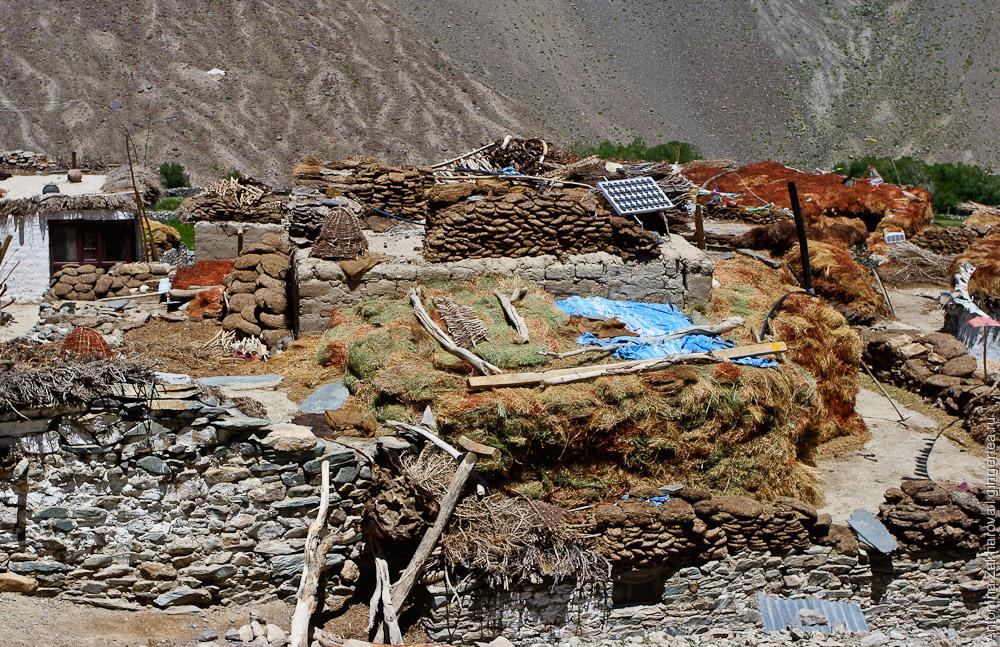 Запасы сена и кизяка на крышах дома в Занскаре