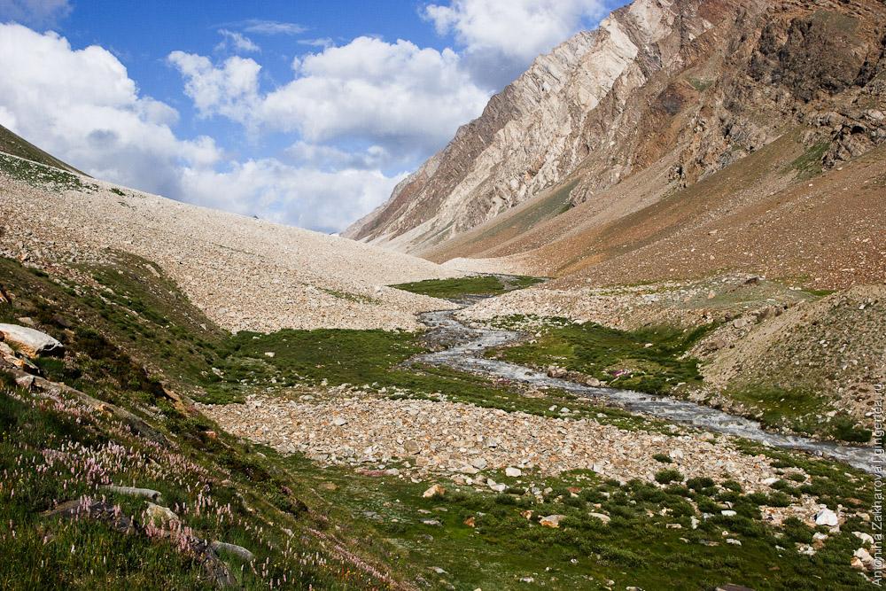 Идиллическая долина к перевалу Чилунг-Ла, Каргил, Индия