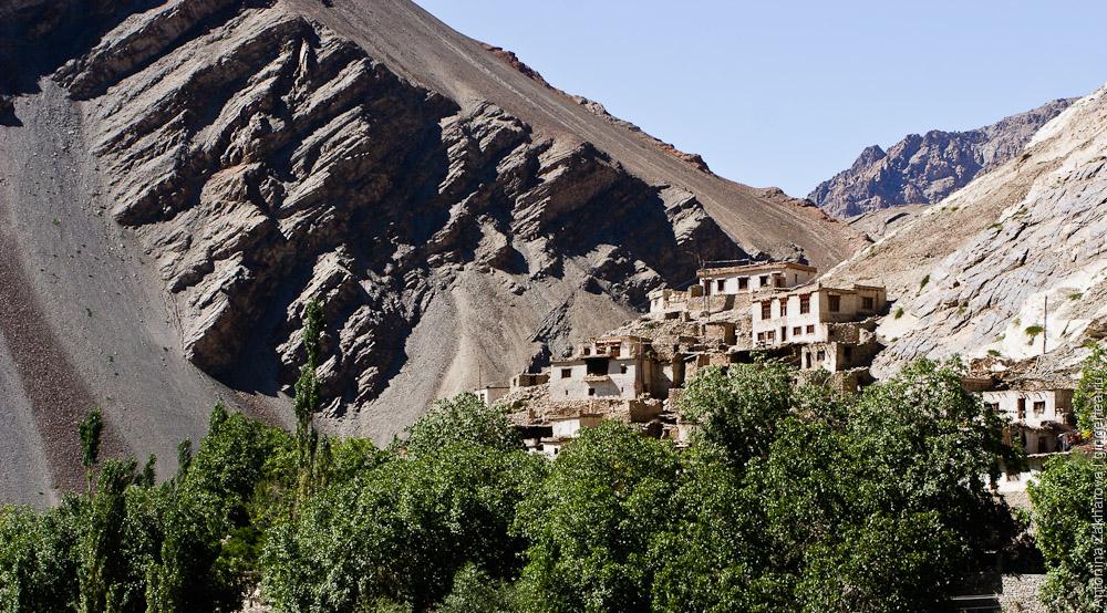 тибетская деревня, окруженная абрикосовыми садами, в долине Инда