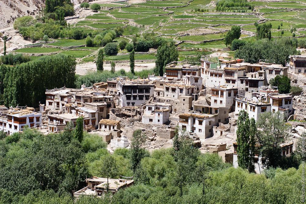 глиняные дома в городе Лех, Ладакх