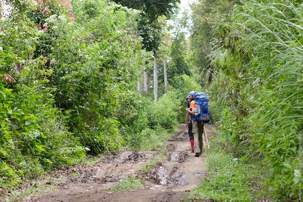 Поход по вулканам Сибаяк и Синабунг