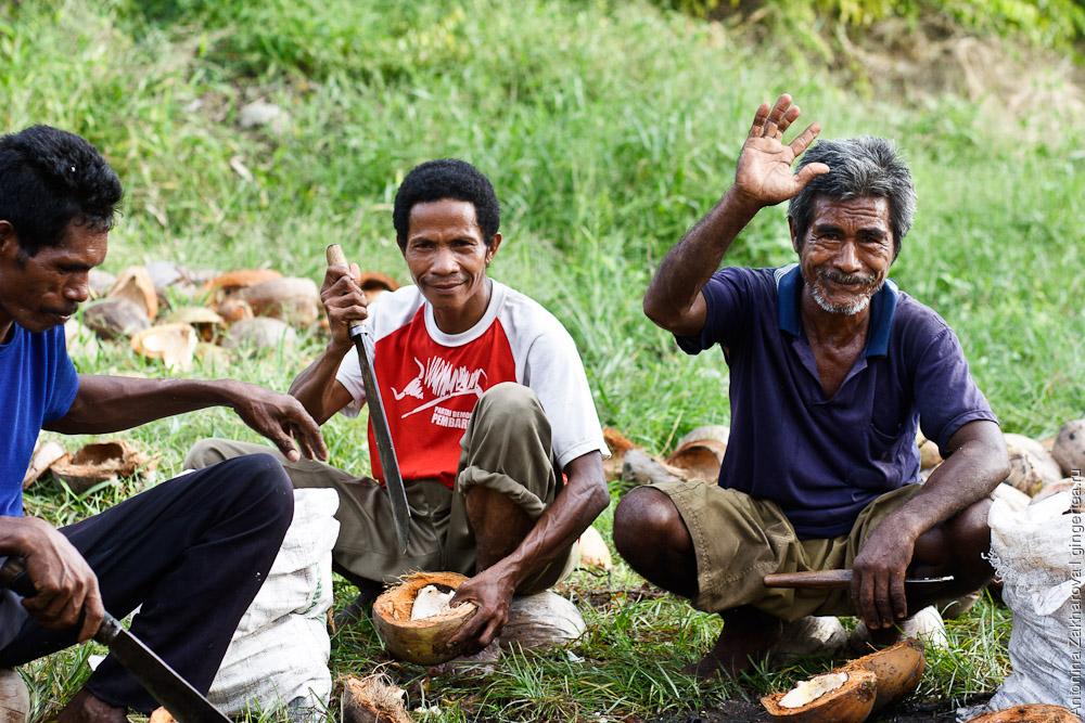 кокосовая фабрика в Индонезии