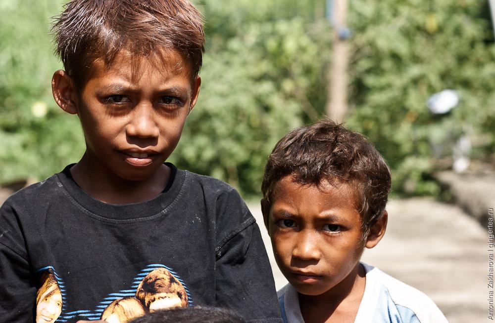 дети из деревни на Флоресе, children from rural Flores