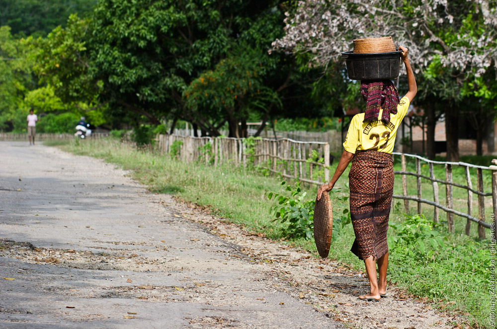 Жители острова Флорес
