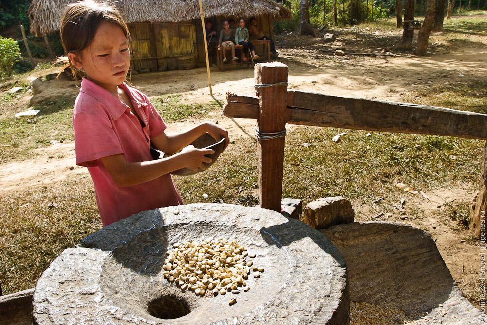 кукуруза в ручной мельнице в Лаосе