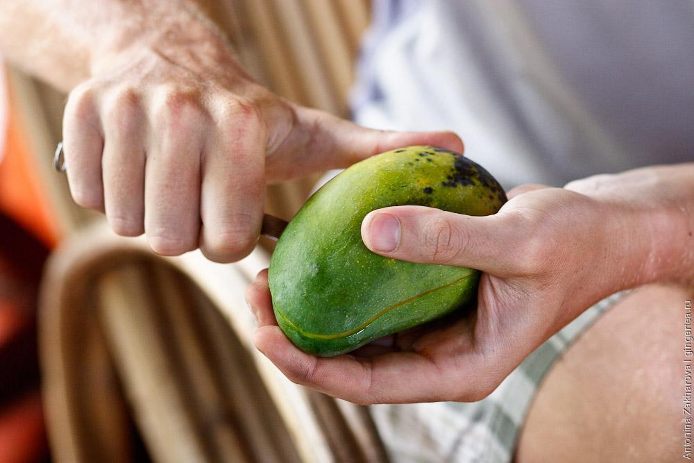 очистка и нарезание манго способом ёжик