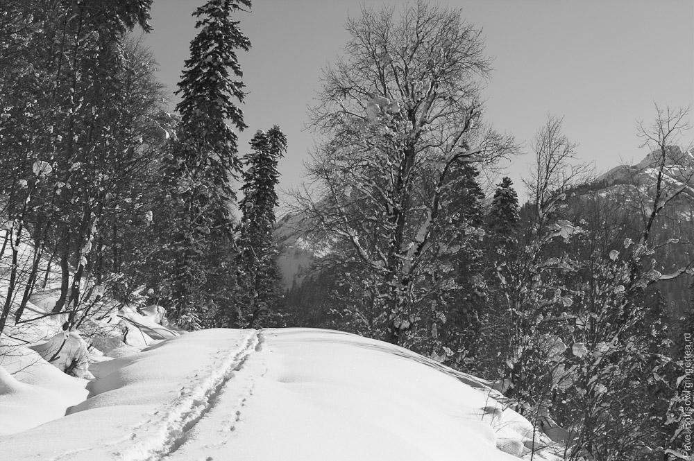 Абхазия на лыжах. От озера Рица к курорту Авадхара под новый год
