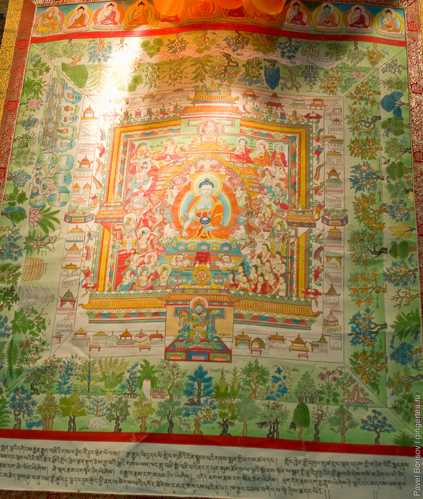 Тибетская традиционная медицина