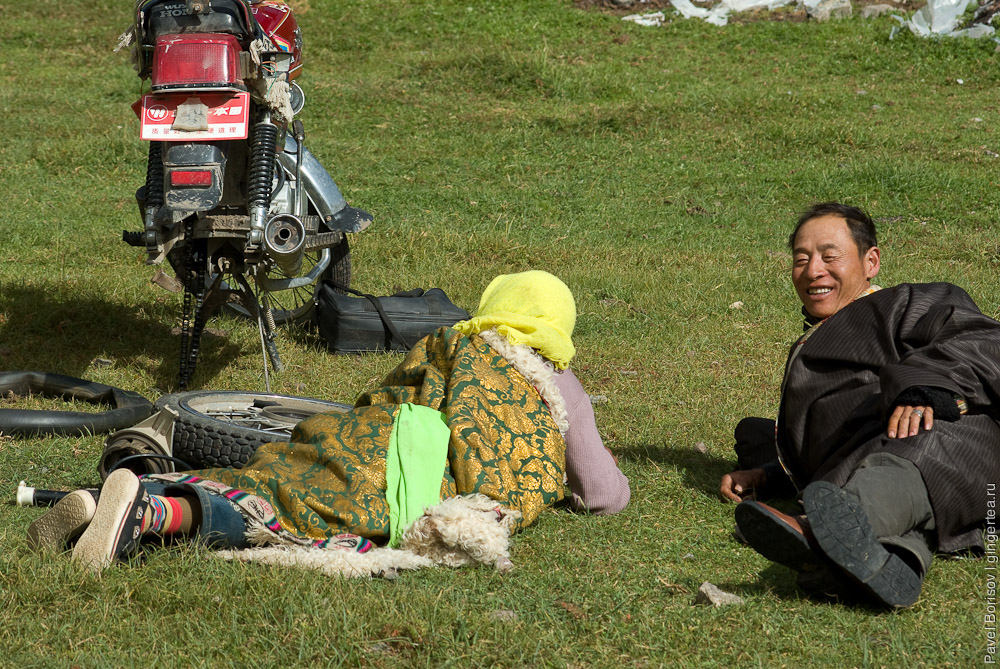 тибетские пастухи, tibetan nomads