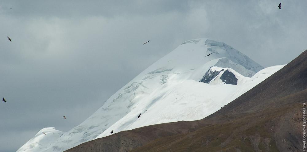 Птицы на фоне горы Амнэ Мачин
