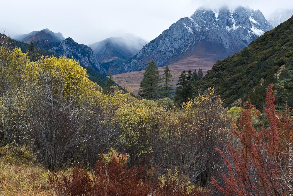 осень в розовой долине у горы Гьеньен, Сычуань