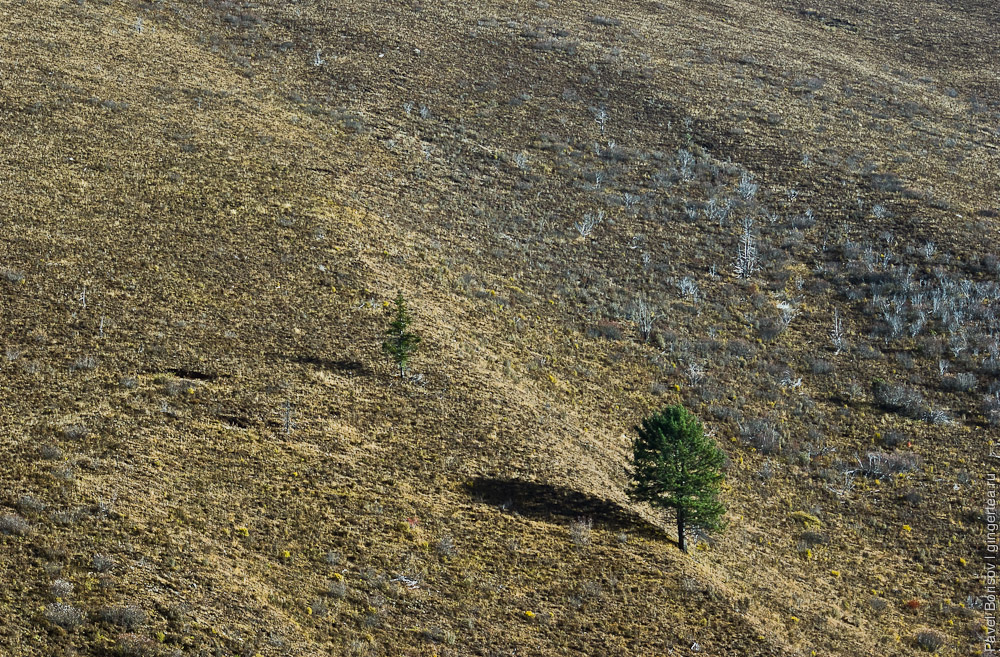 склоны внизу Розовой долины сухие и безлесые
