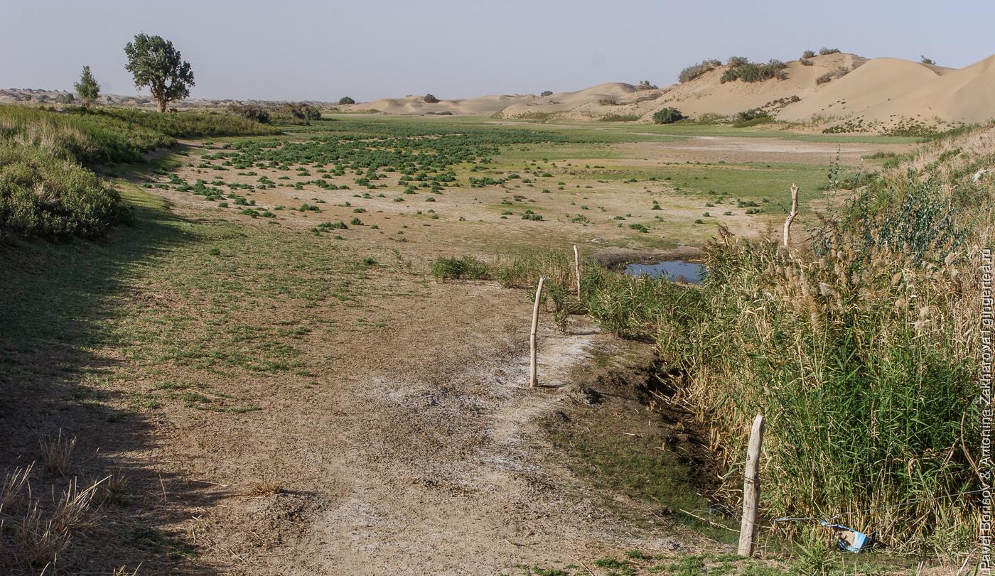 источник воды в пустыне Такла-Макан