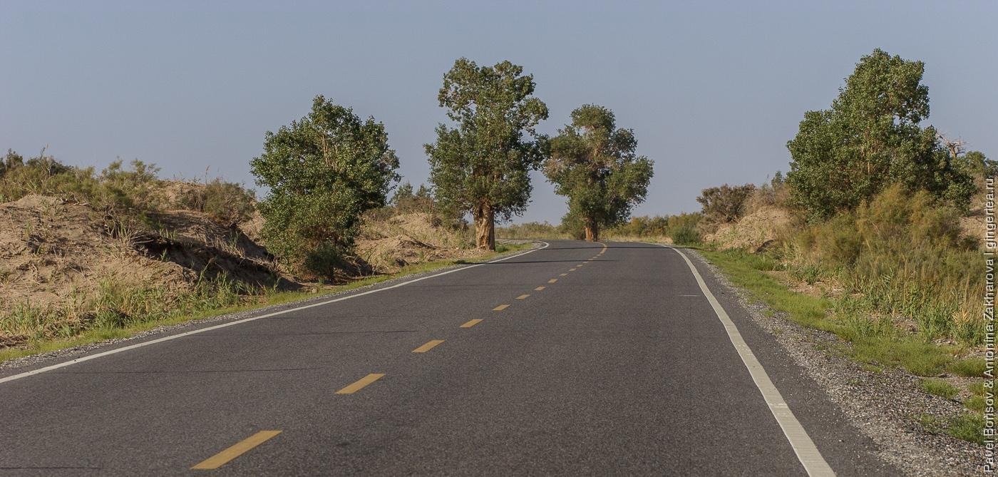 автомобильная дорога в Синьцзяне