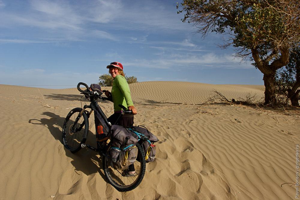 велопоход в пустыне Такла-Макан