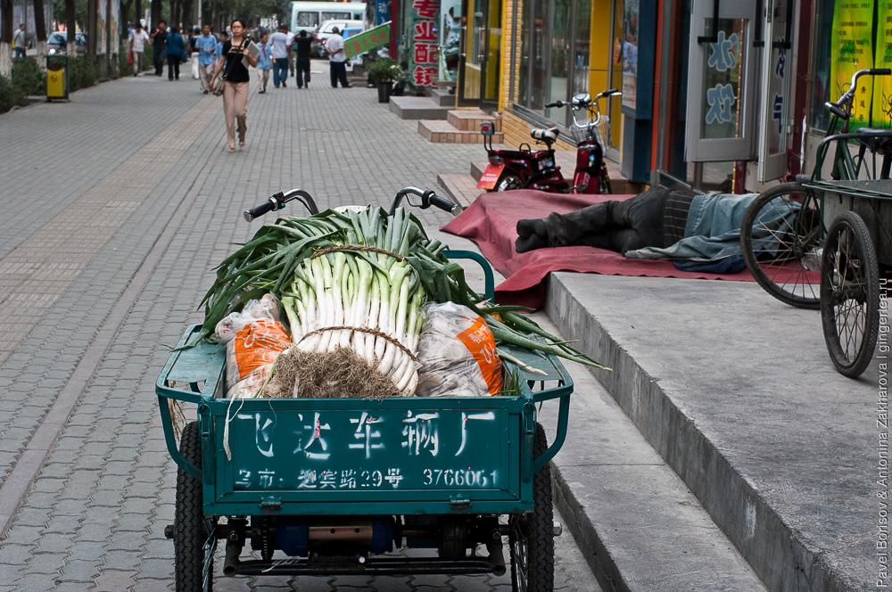 тележка с продуктами в Урумчи, Китай