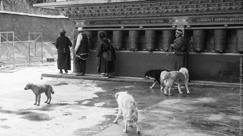 молитвенные колеса в Тибете