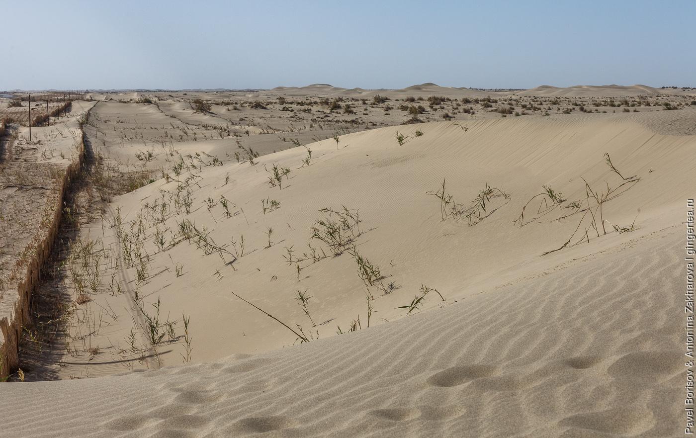 песчаные дюны в пустыне Такла-Макан