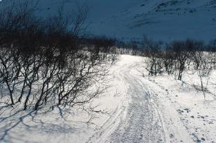 8 марта в новом стиле - по зимним Хибинам на лыжах