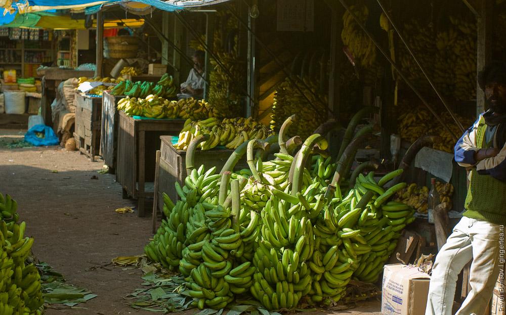 Какие бывают бананы. Сорта, вкус и слепое тестирование
