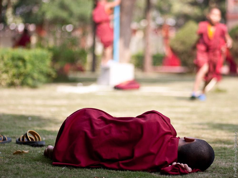 Мальчик монах. Бодхгая. Индия