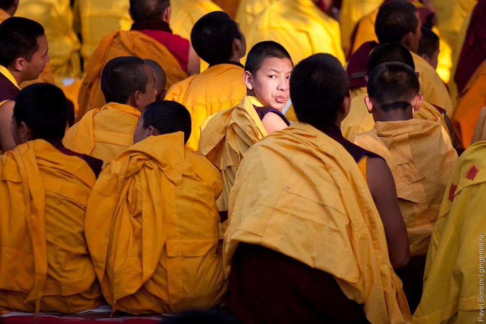 Дети-монахи на медитации. Бодхгая. Индия