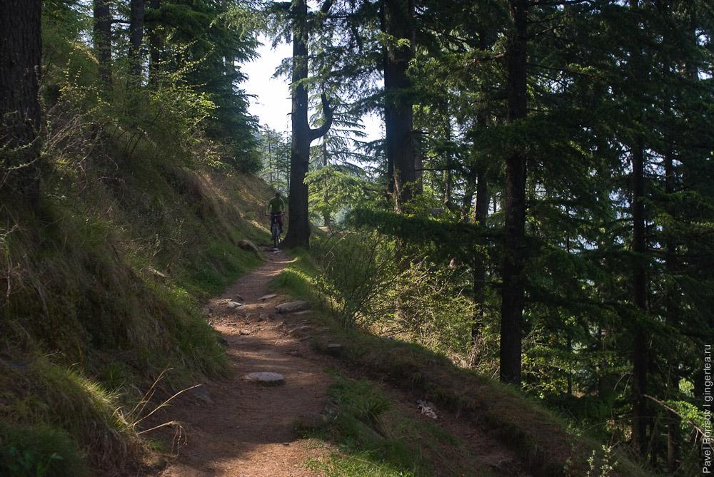 езда на велосипеде по узкой тропе в горах