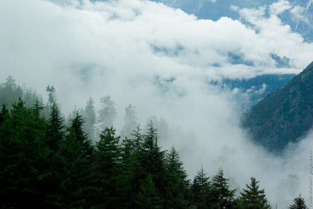 туманная погода в долине Куллу в Химачал-Прадеше
