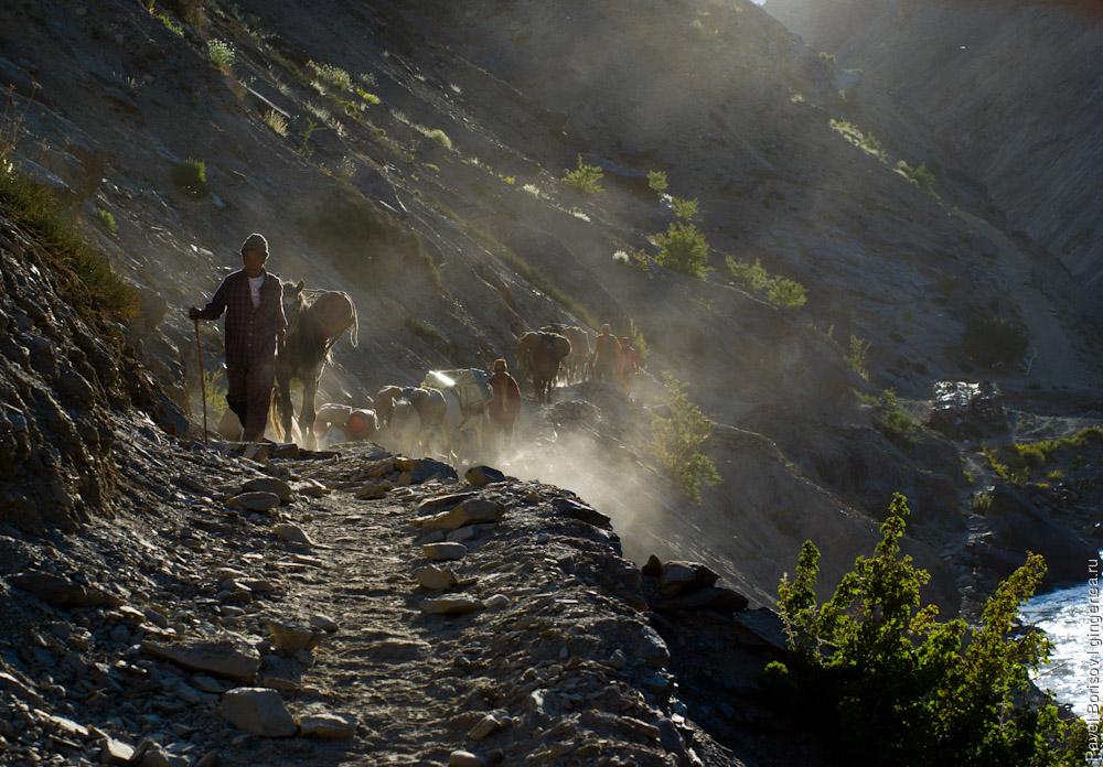 В верховья реки Царап-Чу до сих пор нет дороги и все грузы и продукты завозят конными караванами