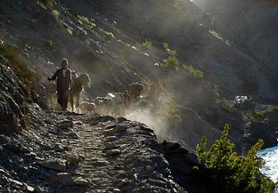 Самое отдаленное княжество Индии. Гималаи, Ладакх, Каракорум - глава 4