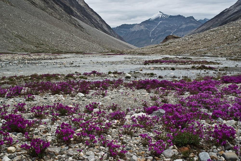 Перевал Чилунг-Ла, восточная долина, Каргил, Индия