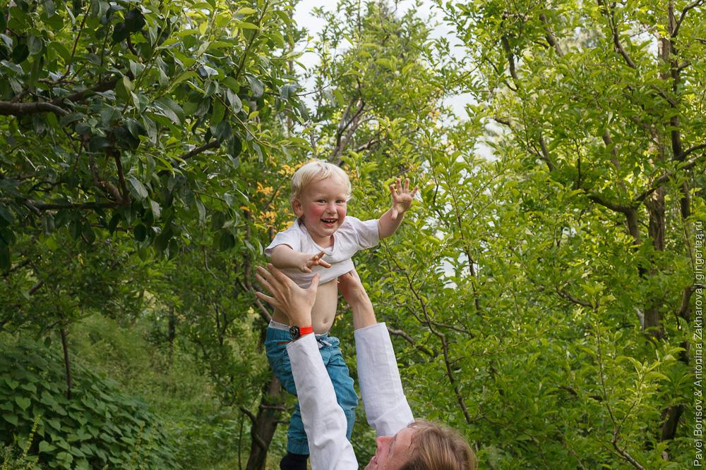 портрет в яблоневом саду