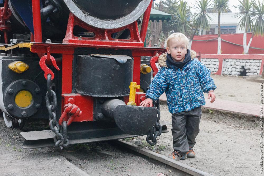 Раритетный паровоз Baby Sivok Дарджилингская Гималайская железная дорога