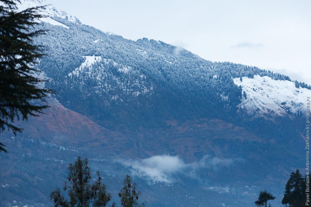 ранняя весна в долине Куллу, Гималаи, Индия
