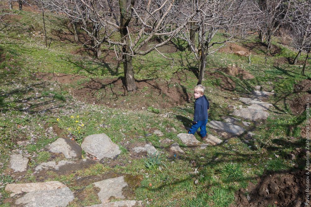 ребенок в яблоневом саду весной