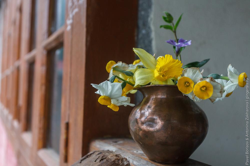цветы в Индийских Гималаях