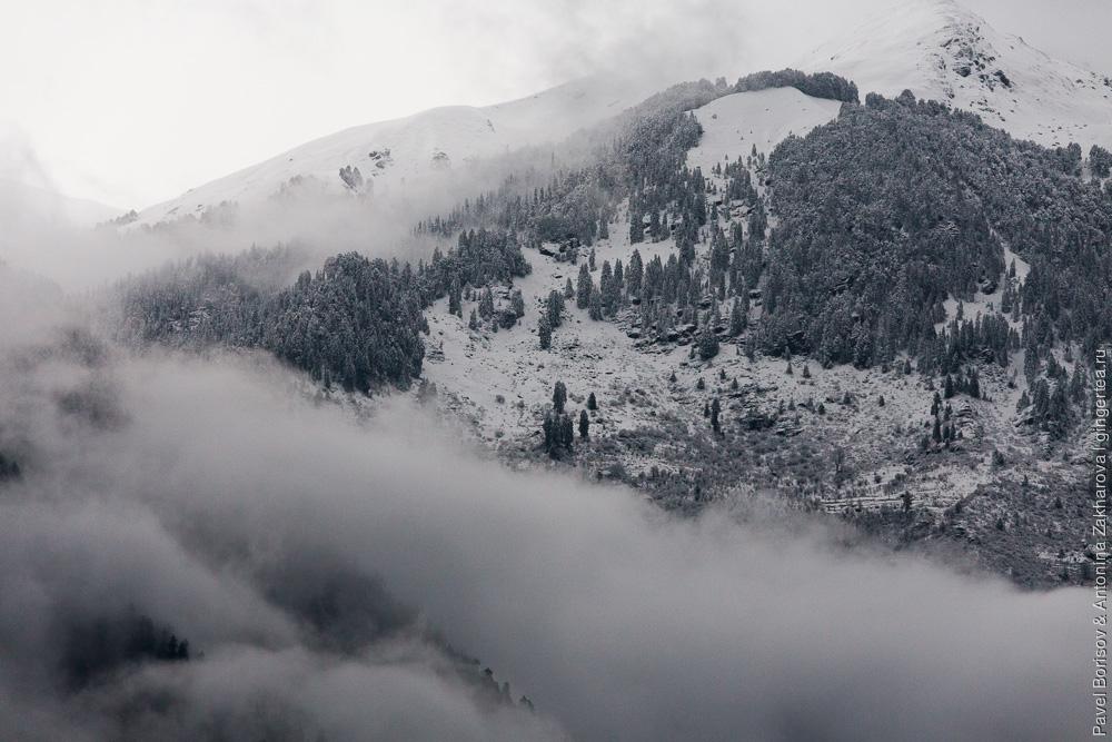 Весна в Гималаях